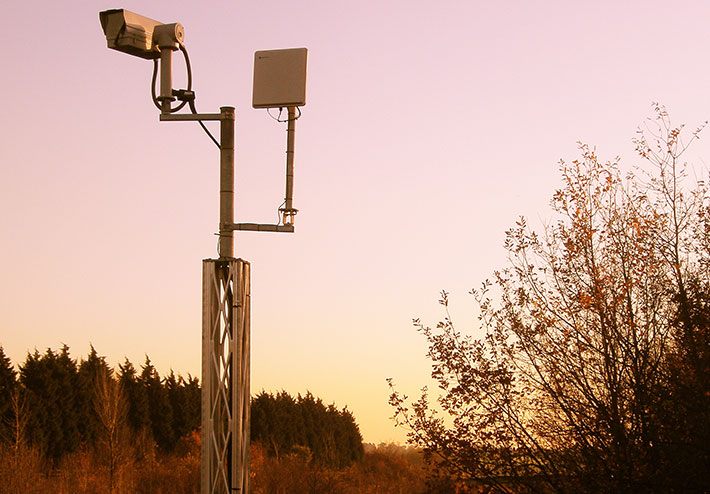 fixed wireless solutions can penetrate trees